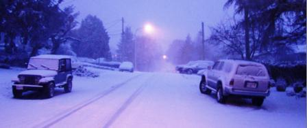 A picture of a snowy street on the south end of Vancouver Island